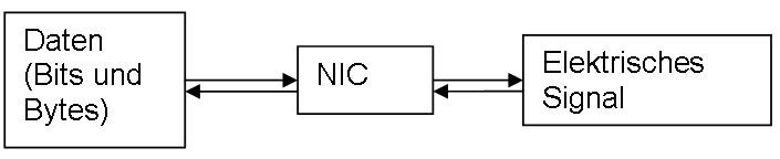 Netzwerkkarte - Datenumwandlung