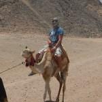 Daniel Bregenzer auf Kamel in Wüste von Ägypten als Beduine mit Kopftuch