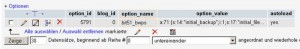 """Zugriff auf die Tabelle """"options"""" über phpMyAdmin"""